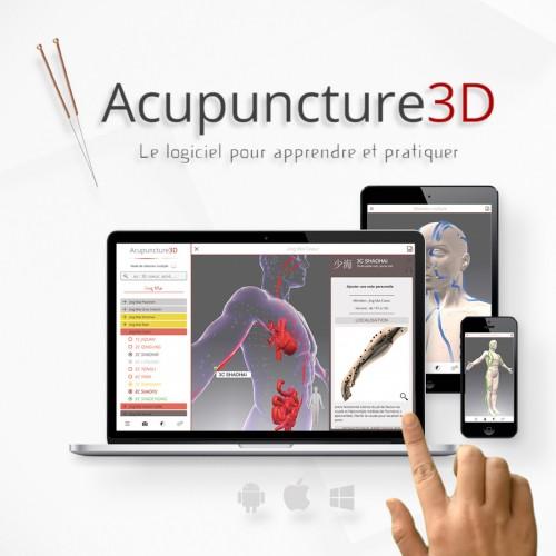 Acupuncture 3D