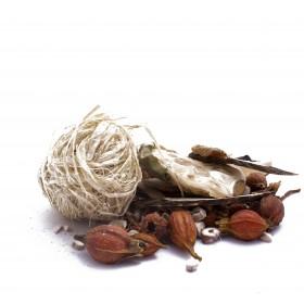 BAI DIAN FENG JIAO NANG by PV herbs