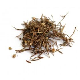 BAI HUA SHE SHE CAO - Herba Oldenlandae