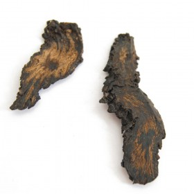 ROU CONG RONG - Herba Cistanches Deserticolae