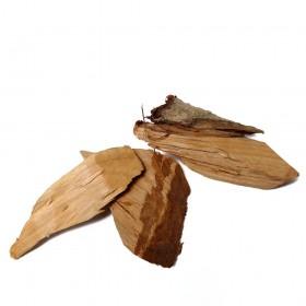 WEI LING XIAN - Radix et rhizoma Clematidis