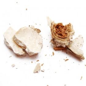 FU SHEN -Sclerotium Poriae Cocos Paradicis