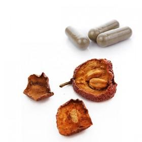 SHAN ZHA Fruit de l'Aubépine